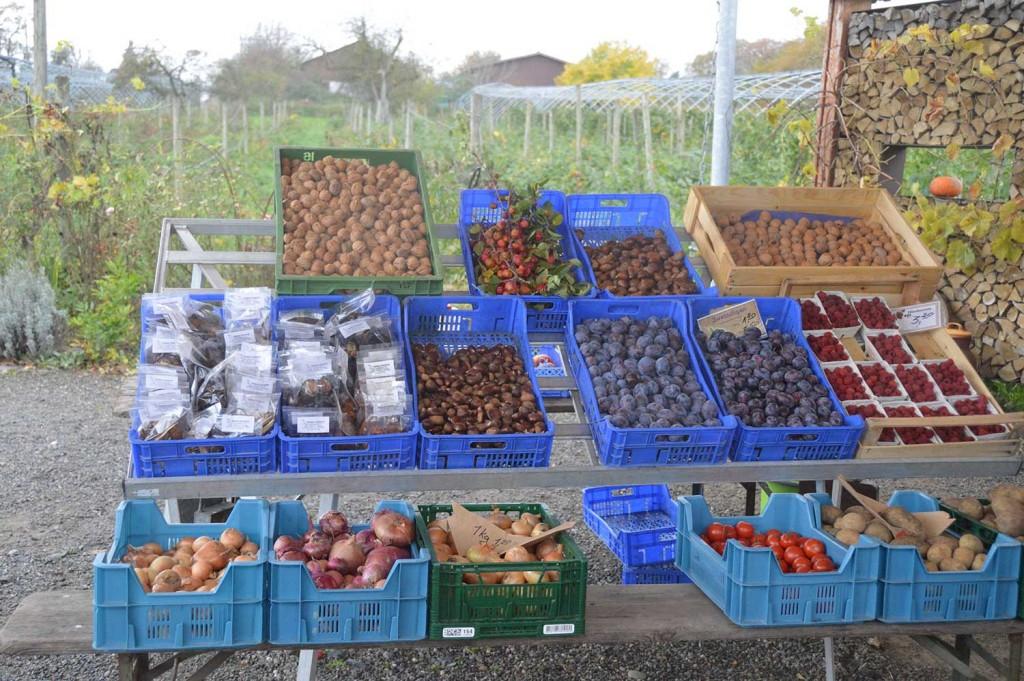 kleiner Marktstand in Mitten der Pampas
