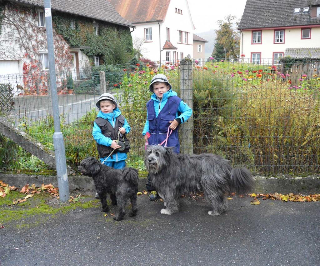 Corvin & Laurin die Hundeführer von Morgen 🤣